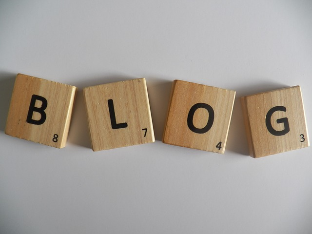 Blog, blogování (public domain)